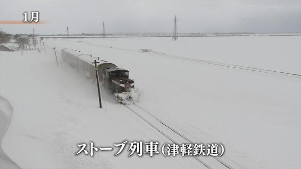 08.津軽鉄道、冬のストーブ列車。雪国の知恵、雪にんじん
