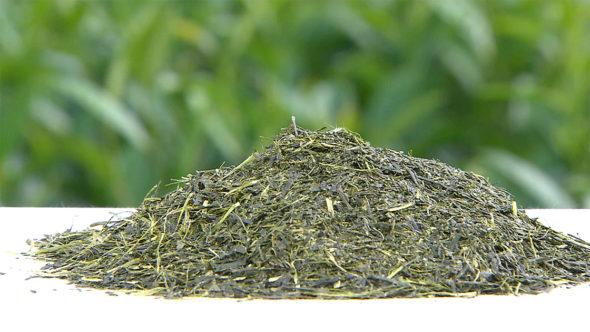 05.緑茶の製造工程。蒸熱、乾燥、揉捻、精揉