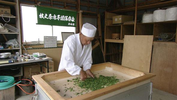 06.伝統の技、静岡県茶手揉保存会による手揉みのお茶