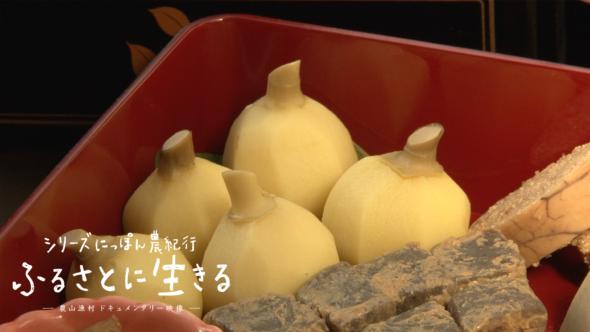 06.越谷の伝統野菜「クワイ」の収穫