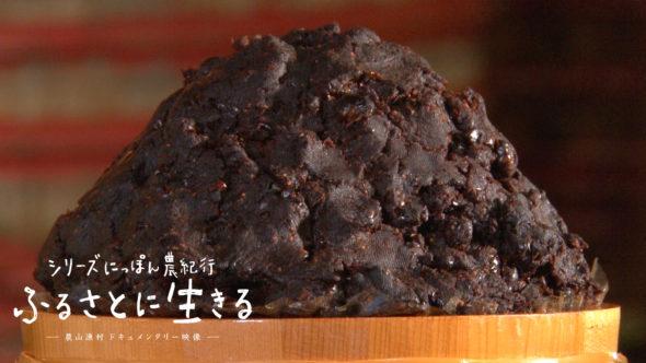 01.岡崎市の八丁味噌、石積職人の伝統技法