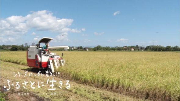 06.お米の収穫と琵琶湖の恩恵